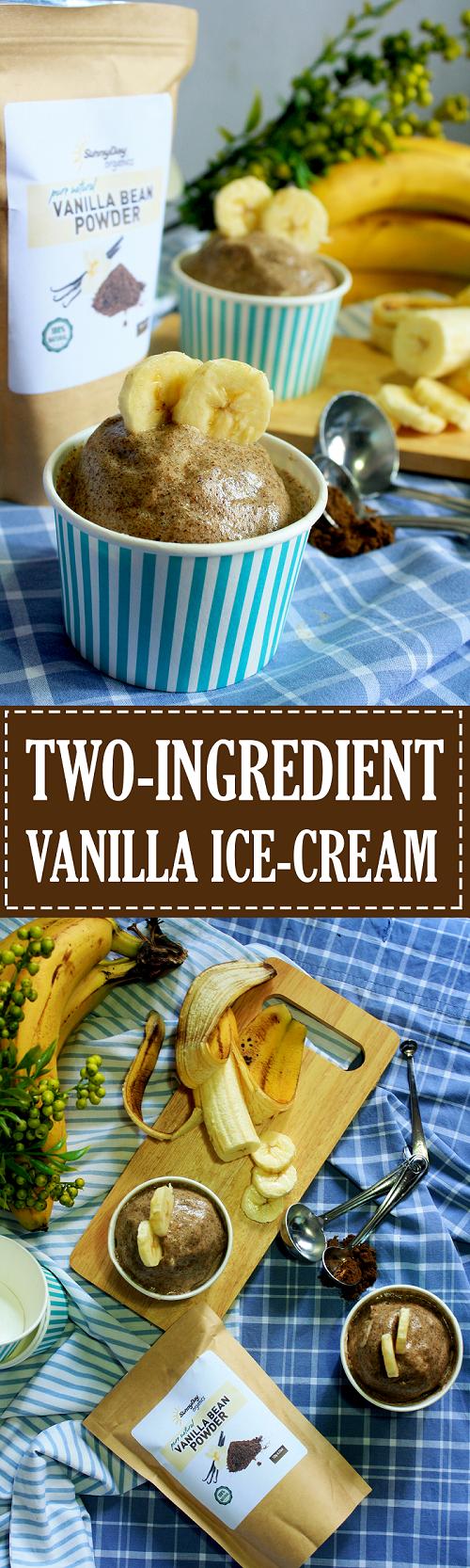 Two Ingredient Vanilla Ice Cream Recipe - Summer Day Naturals