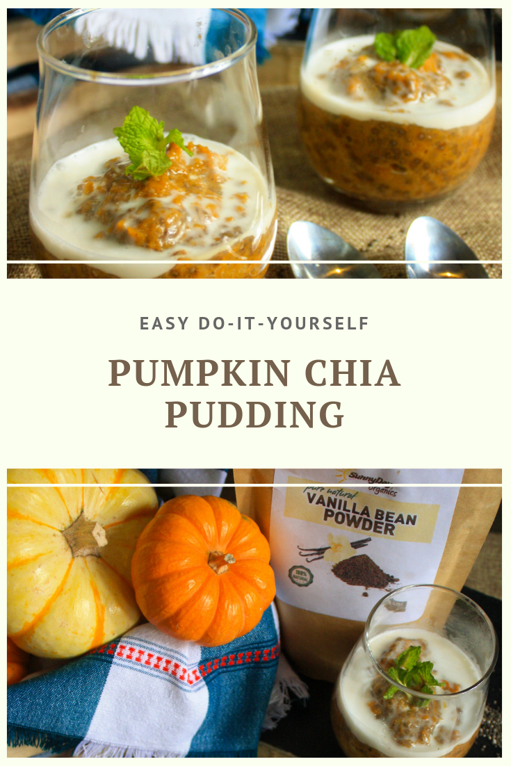 Paleo Pumpkin Chia Pudding by Summer Day Naturals